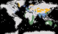 Karte zur Verbreitung des Kormorans (Phalacrocorax carbo)