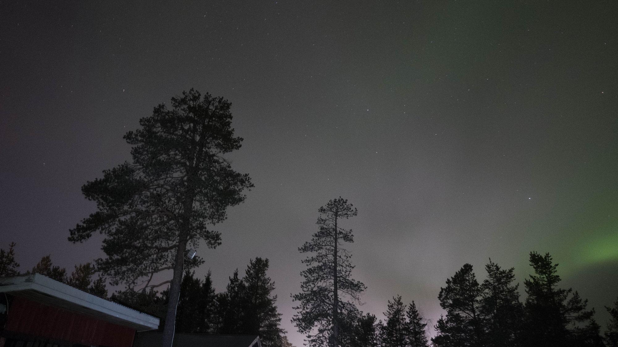Wie ich die Polarnacht und arktische Kälte erlebe