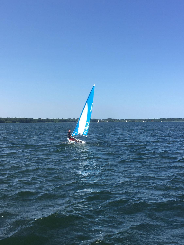 Schöner Segelwind am Sonntag