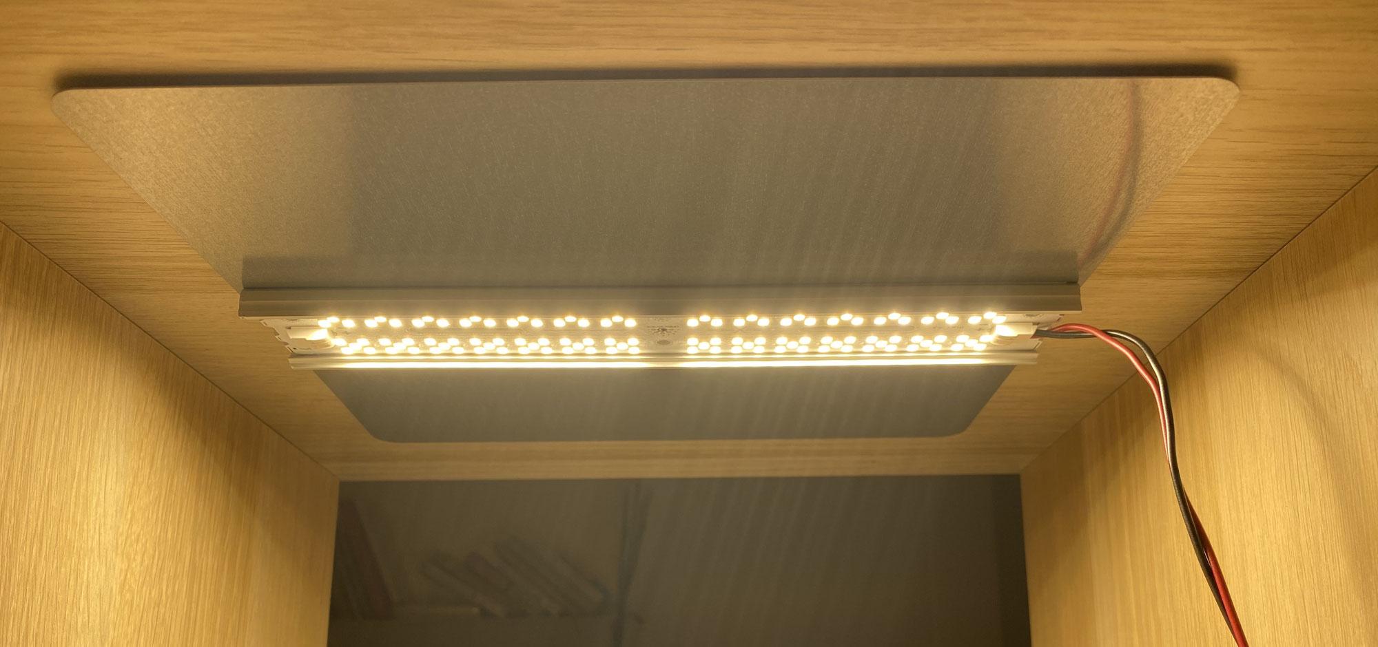 Growlicious Magnet Light 001