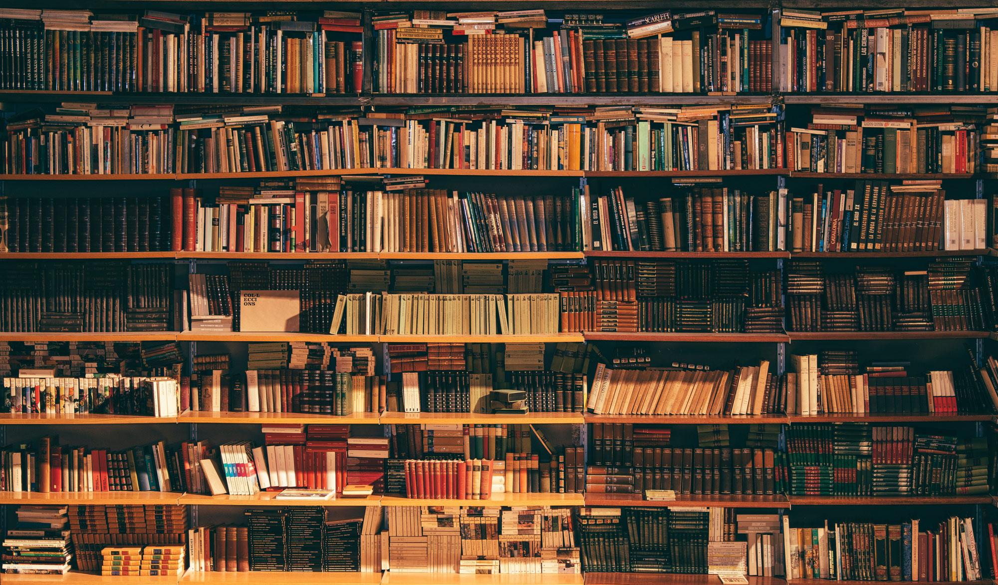 Völlig unbekannte Bücher, die jede Führungskraft gelesen haben sollte