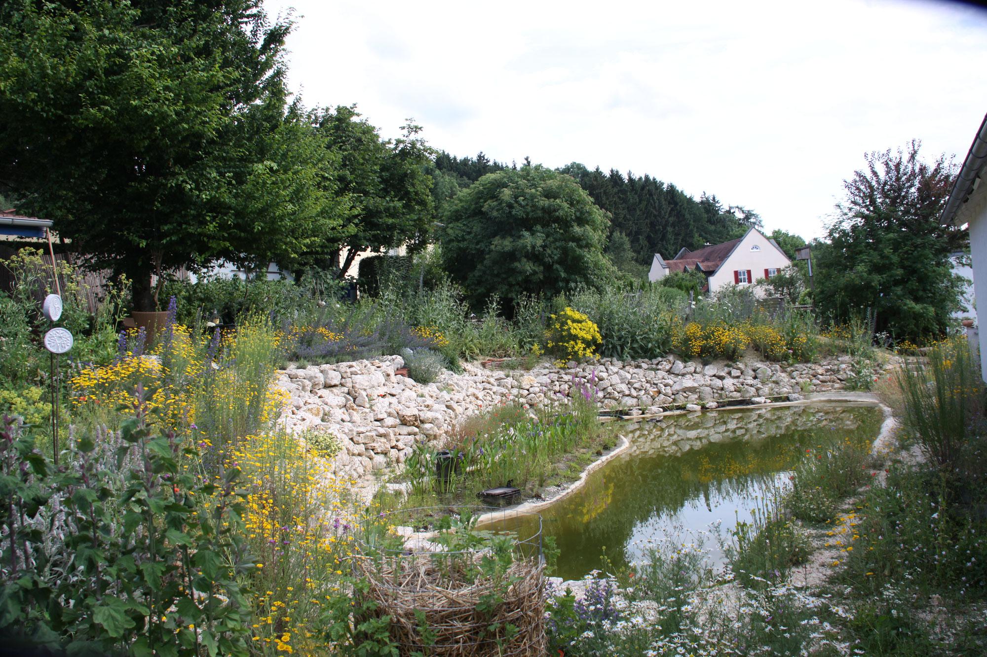 Home - Hortus Aquaveganum