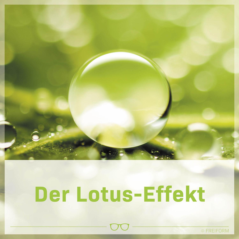 Lotus Effekt
