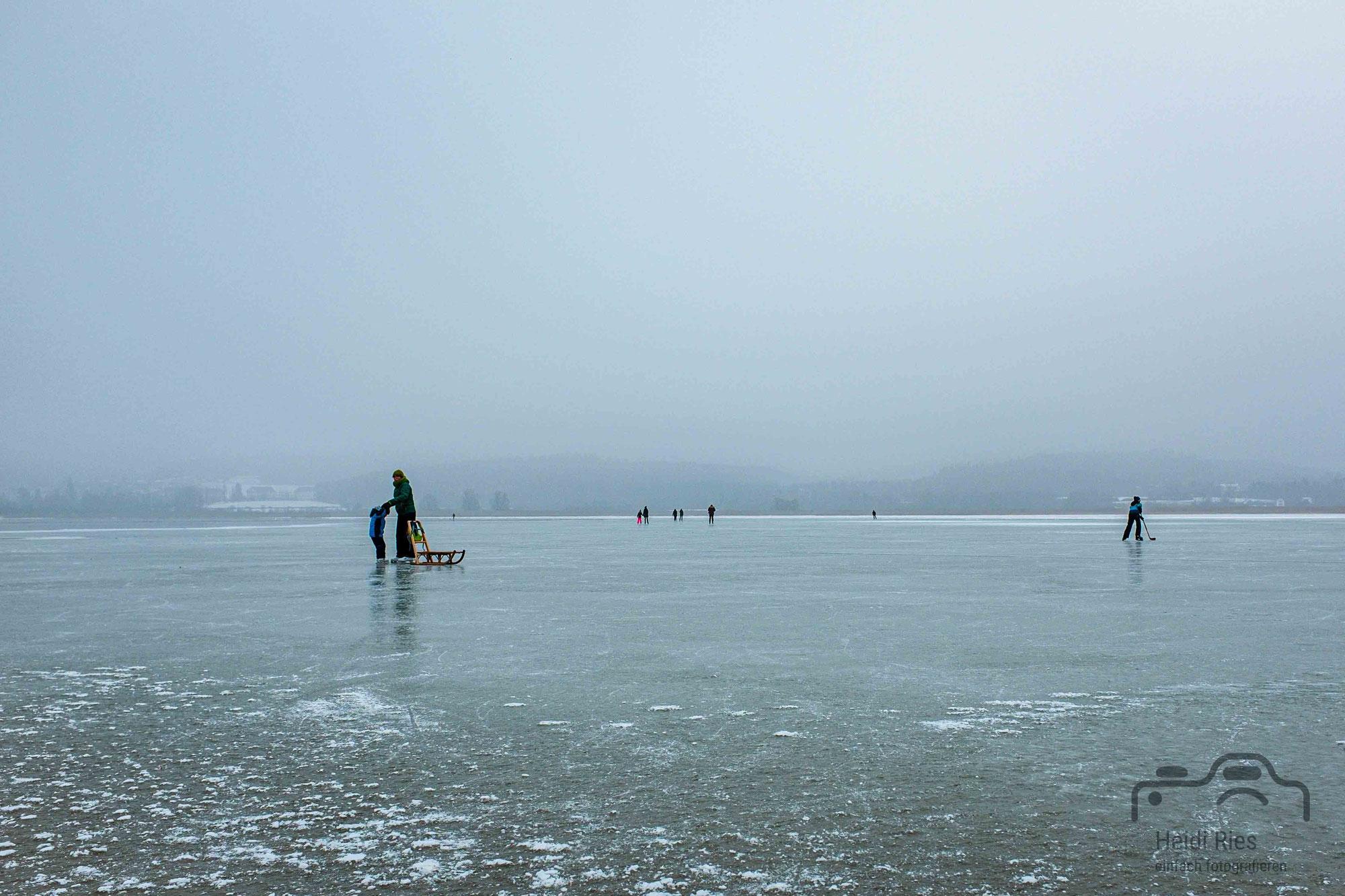 Seegfrörni am Bodensee