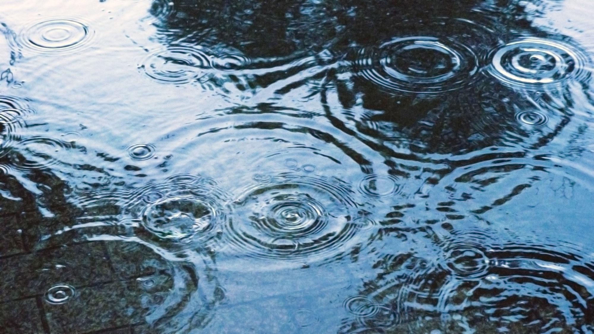 【梅雨の大敵‼】湿邪の原因と対処法