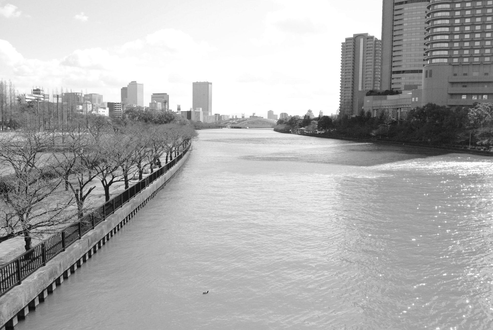 大阪市北区賃貸マンションシティコート - エイトビルディング ...