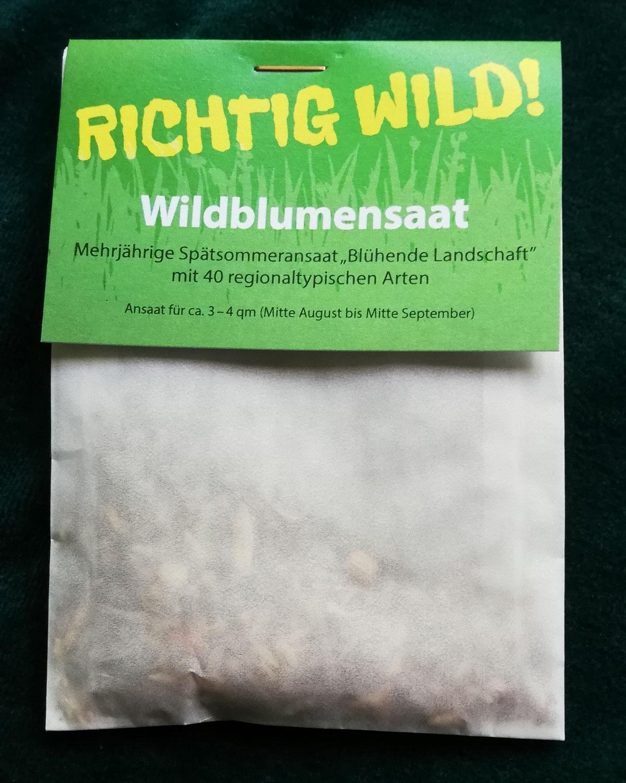 """""""Richtig wild!"""" – die Wildblumensaat der Grünen Liste"""