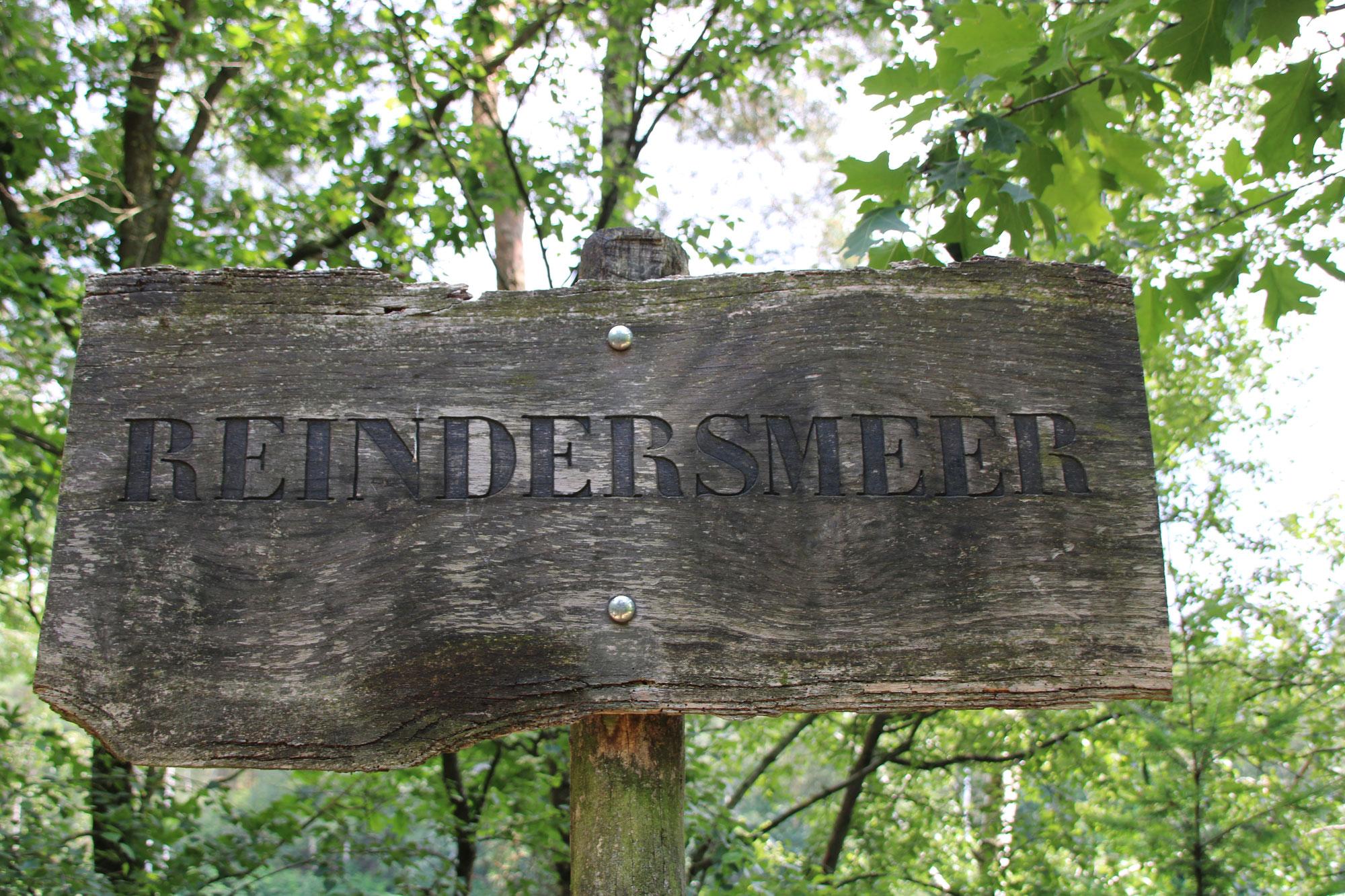 Reindersmeer, Maasduinen