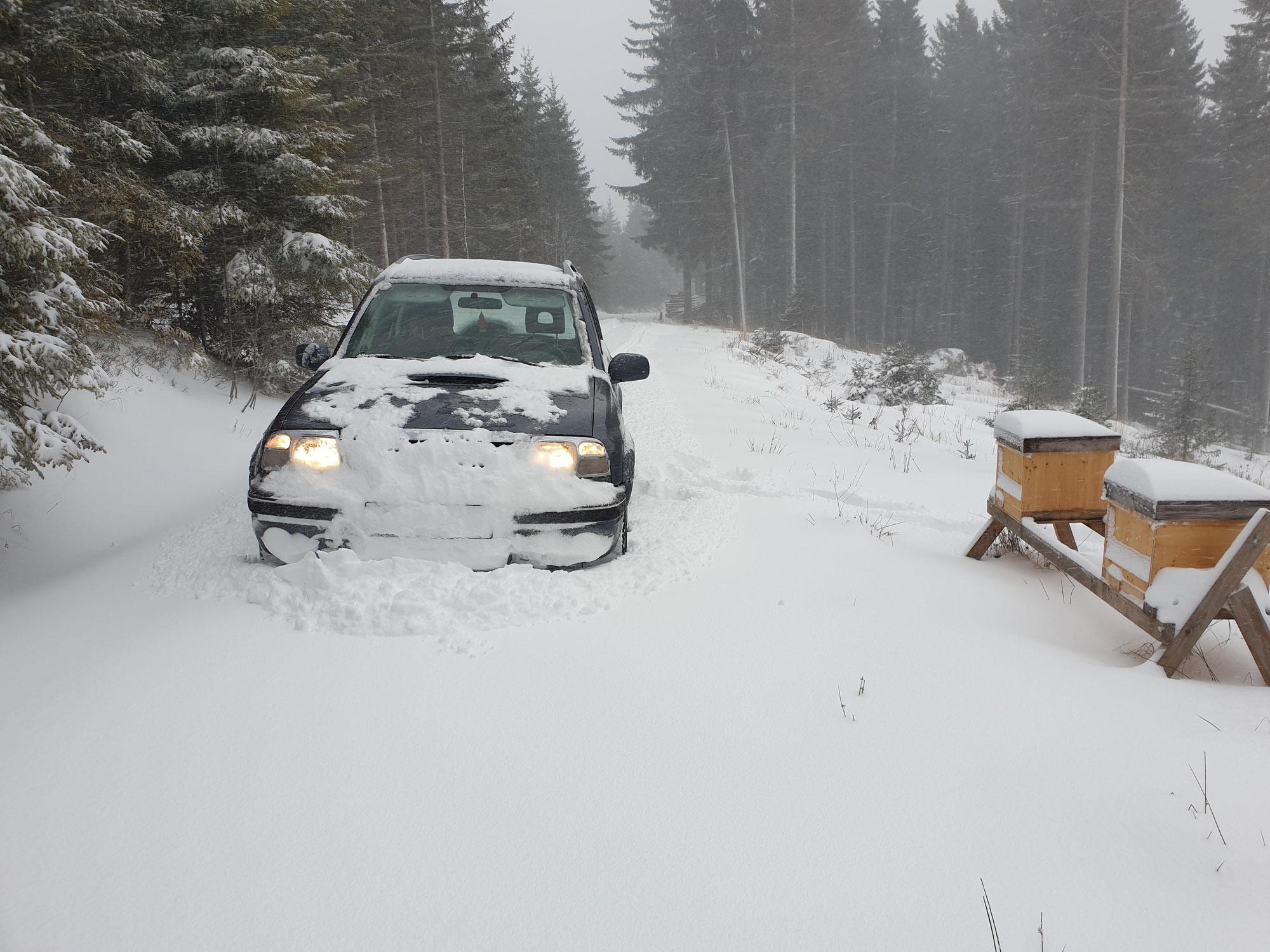Erster Winter auf der Alm