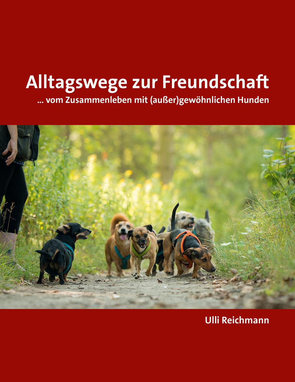 Alltagswege zur Freundschaft - Die Walks (Info & Termine)