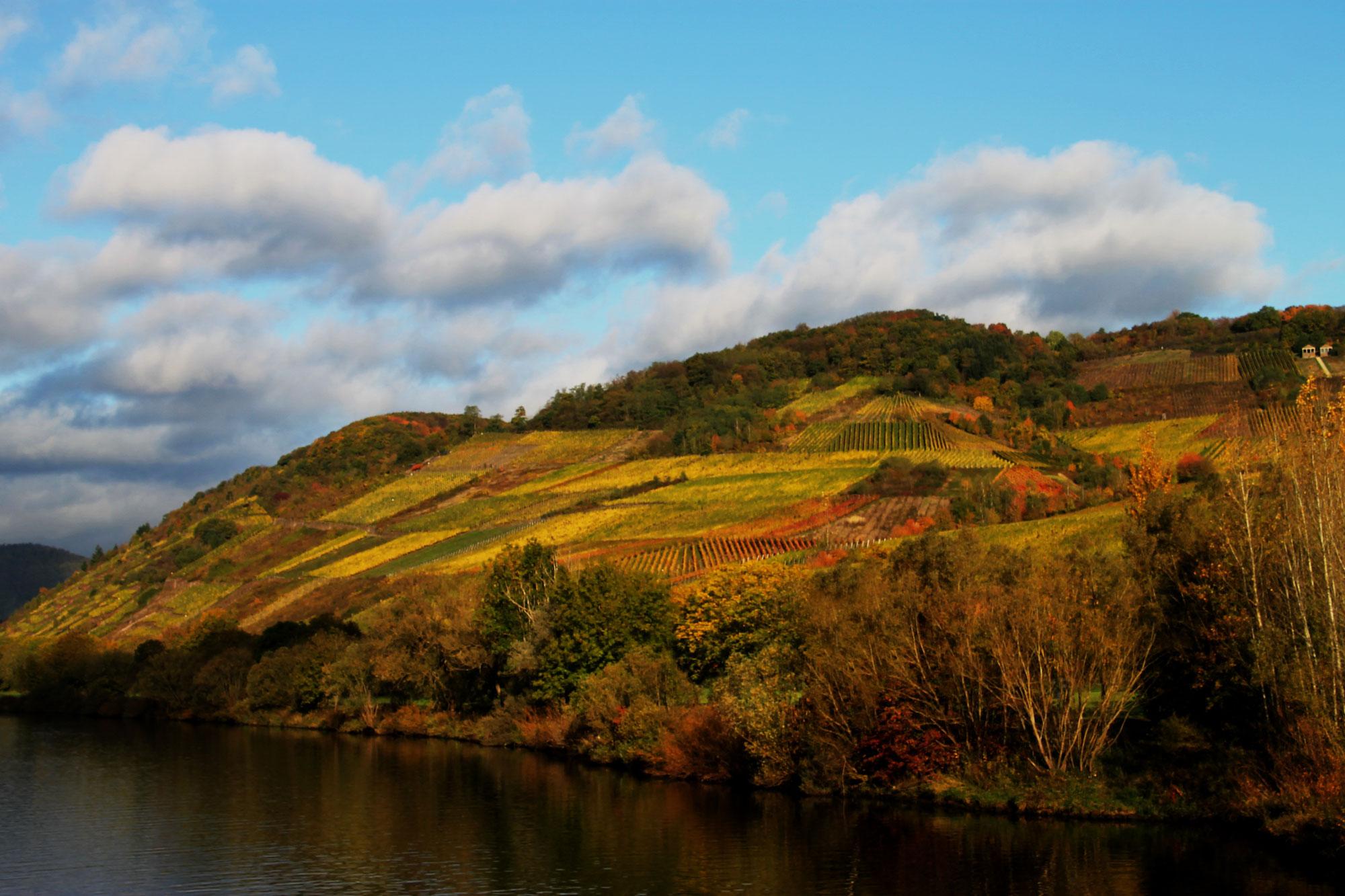 Herbstliche Flusskreuzfahrt Mosel