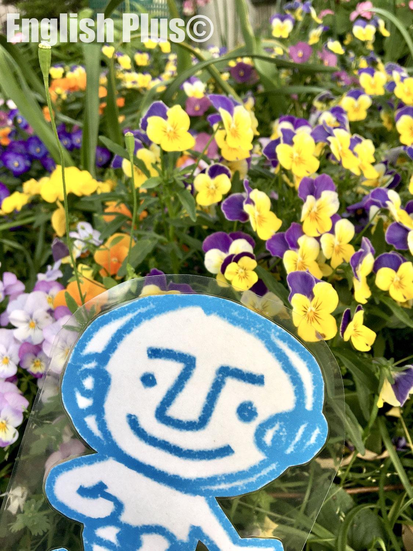 【完全予約制】 ゴールデンウィーク明け2021年5月のEnglish Plus 学校説明会のお知らせ(日本語編)