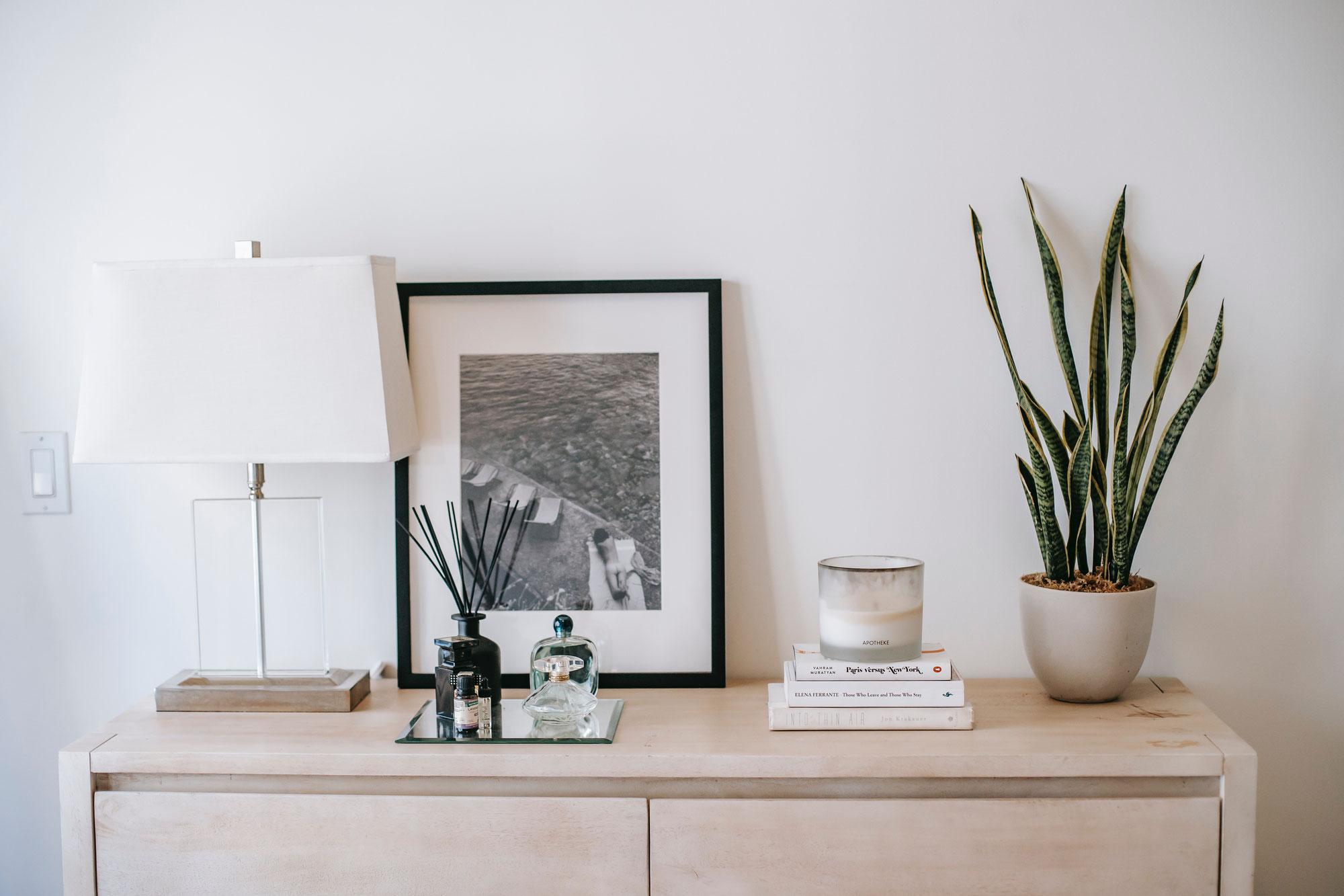 Zimmerpflanzen - natürliche Luftfilter