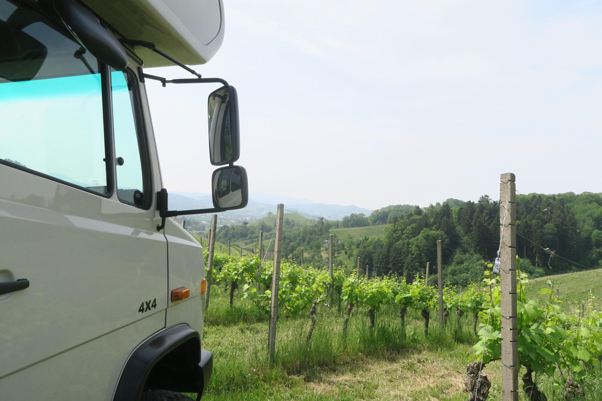 Baden wine route 2018