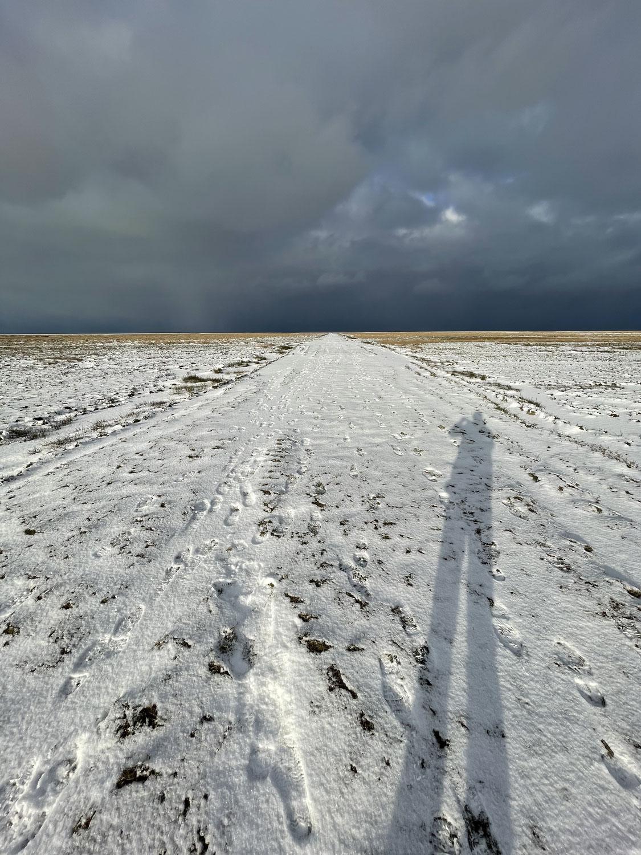 Winter op de kwelder