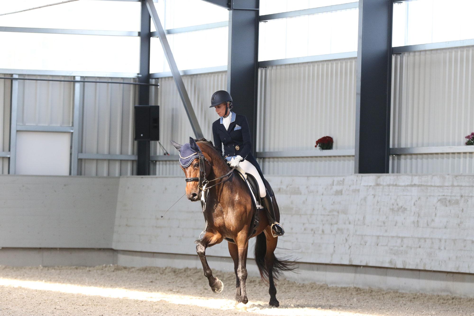 RidersBest - Berufsunfähigkeitsschutz speziell für Pferdewirte und Berufsreiter