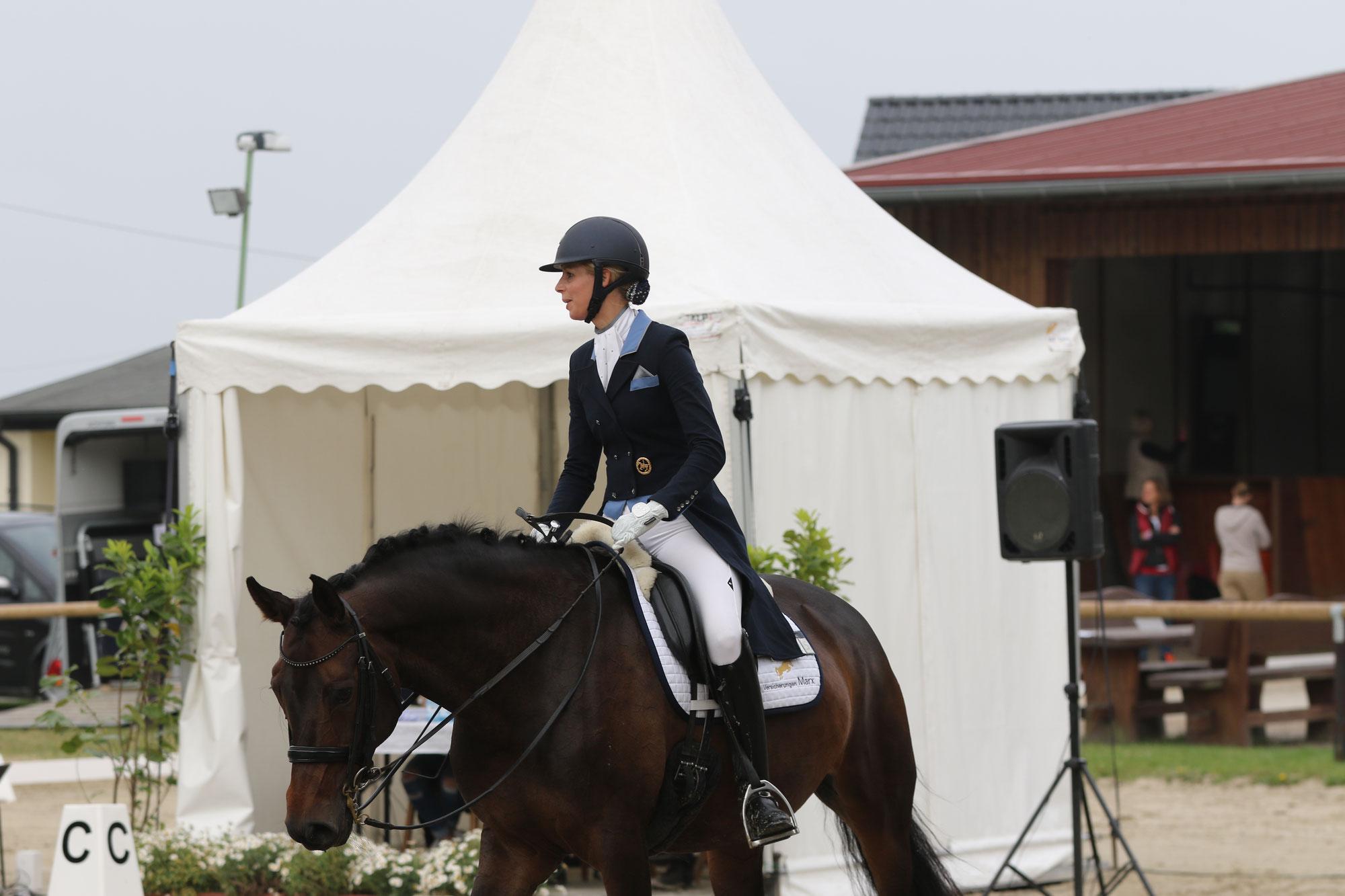 Berufsunfähigkeitsschutz speziell für Pferdewirte und Berufsreiter