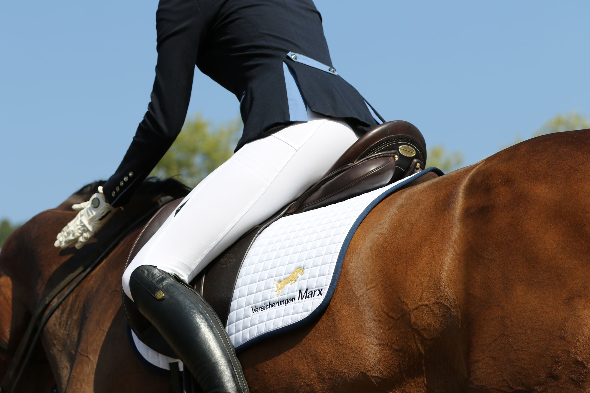 Reiten ohne Berufsunfähigkeitsversicherung-ist wie Bungee-Jumping ohne Seil für Reiter