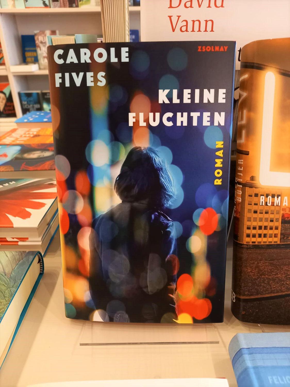 Kleine Fluchten von Carole Fives