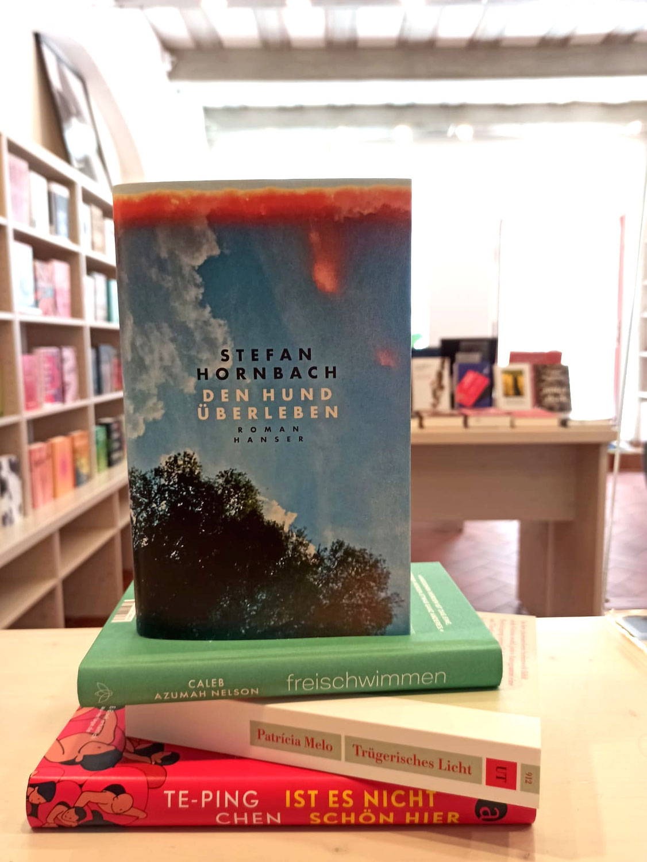 Ausblick Spätsommer 2021 im Buchladen Teil 2