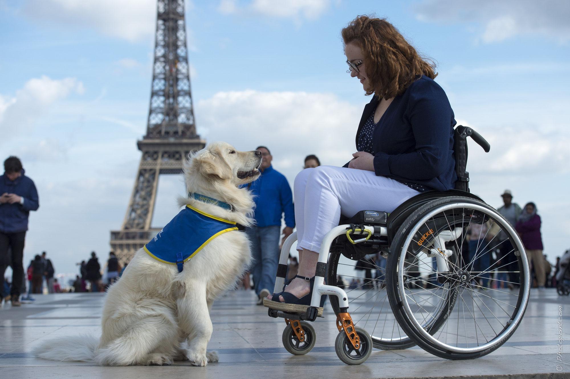 Rencontre avec Margaux Lenormand, administratrice de l'association Handi'Chiens et maîtresse d'un chien d'assistance