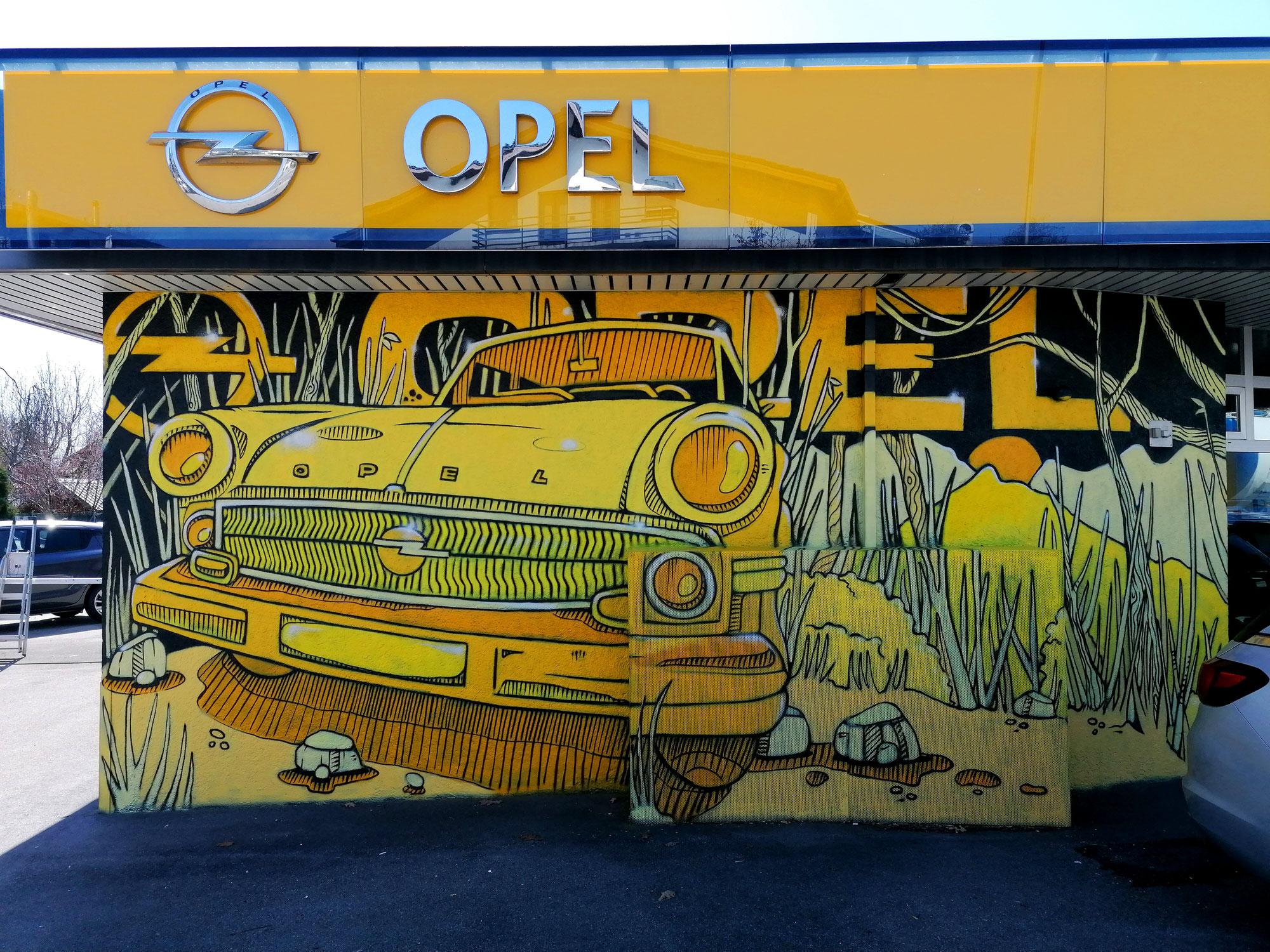 Lieblingsmotiv Auto - Opel, Suzuki