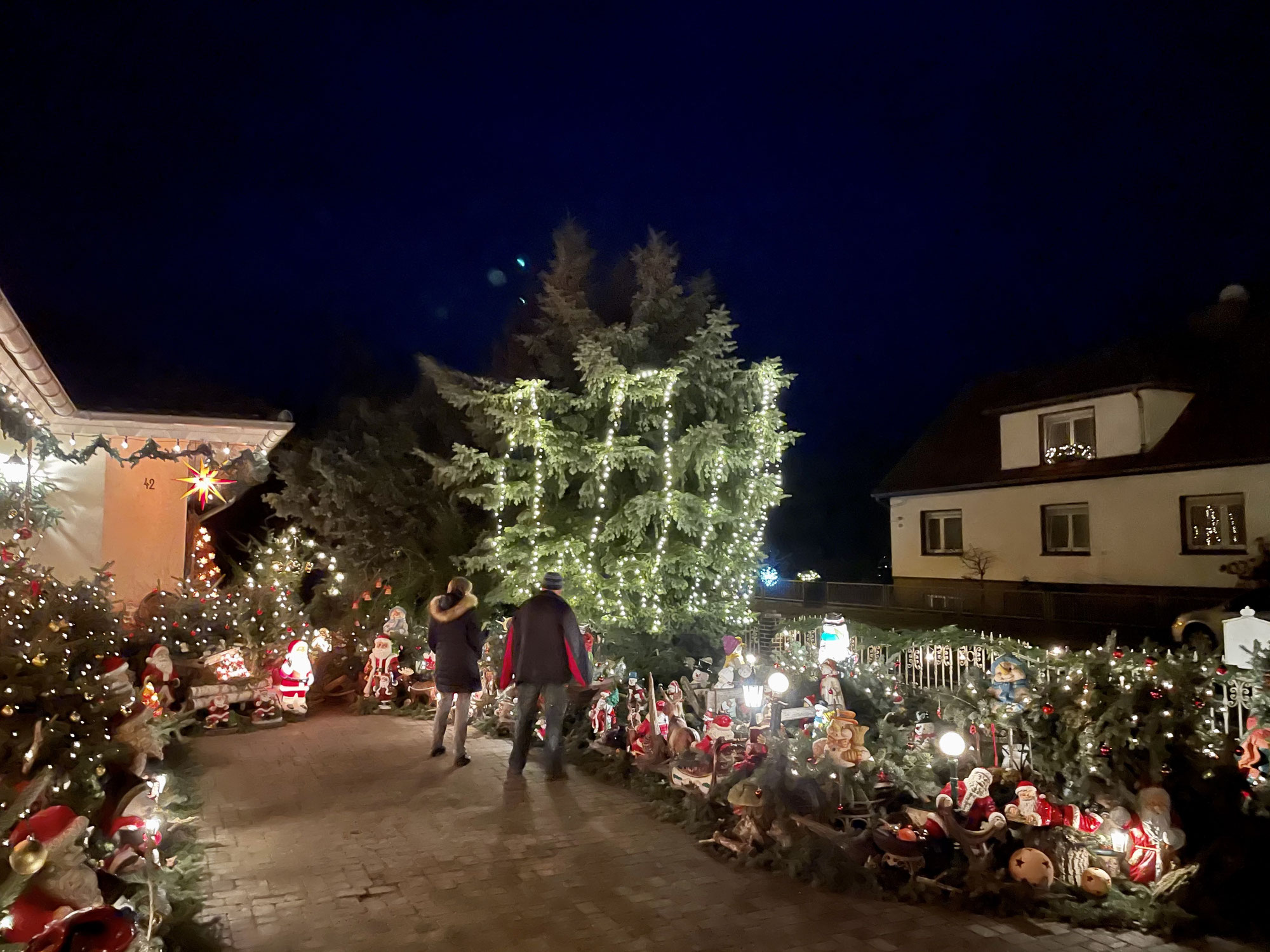 Der Weihnachts-Garten in Straupitz, Fitness-Update, Musikalische Grüße der Musikschule Luckau, Was ist ein Drehbaum?