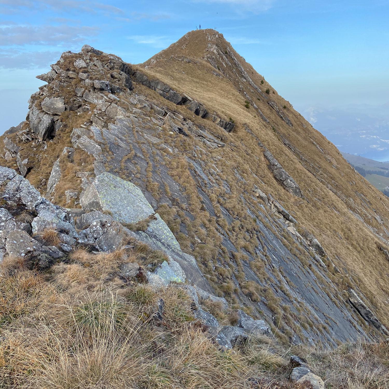 Steinschlaghorn (2321m)