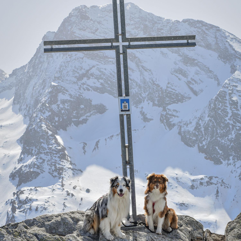 Staldhorn (2463m)