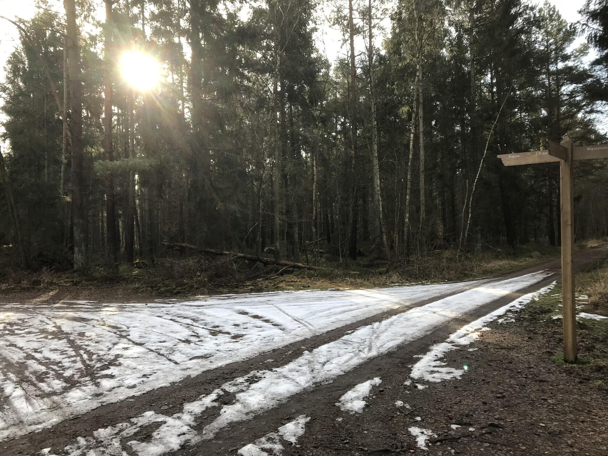 Eine Woche später. Auf einmal Frühling. Das blieb vom Schnee an der See... im Wald... am Weststrand... am Nordstrand.