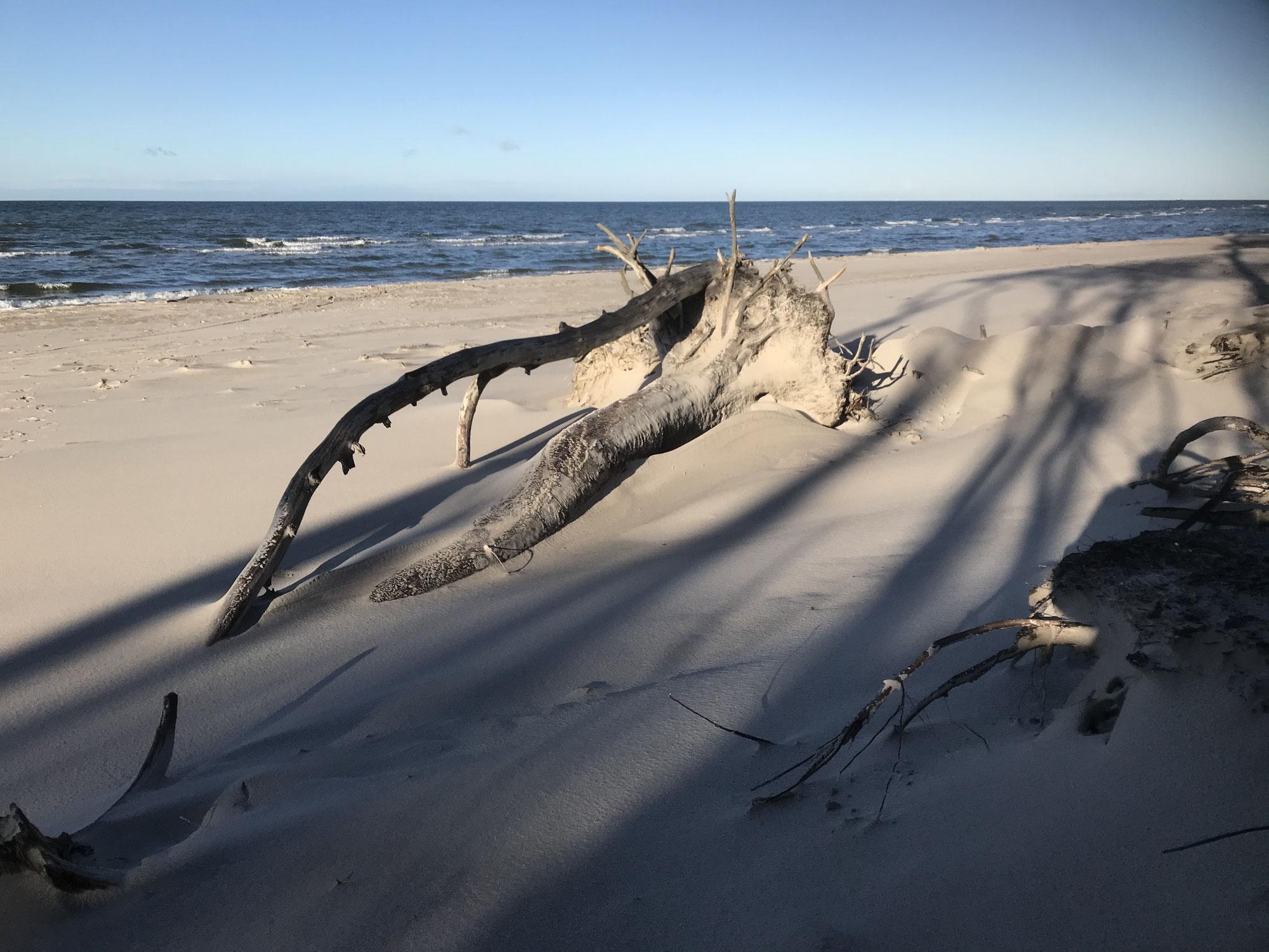 Mein Schreibplatz am Meer mit Sand eingeweht und sonstige Mondlandschaften