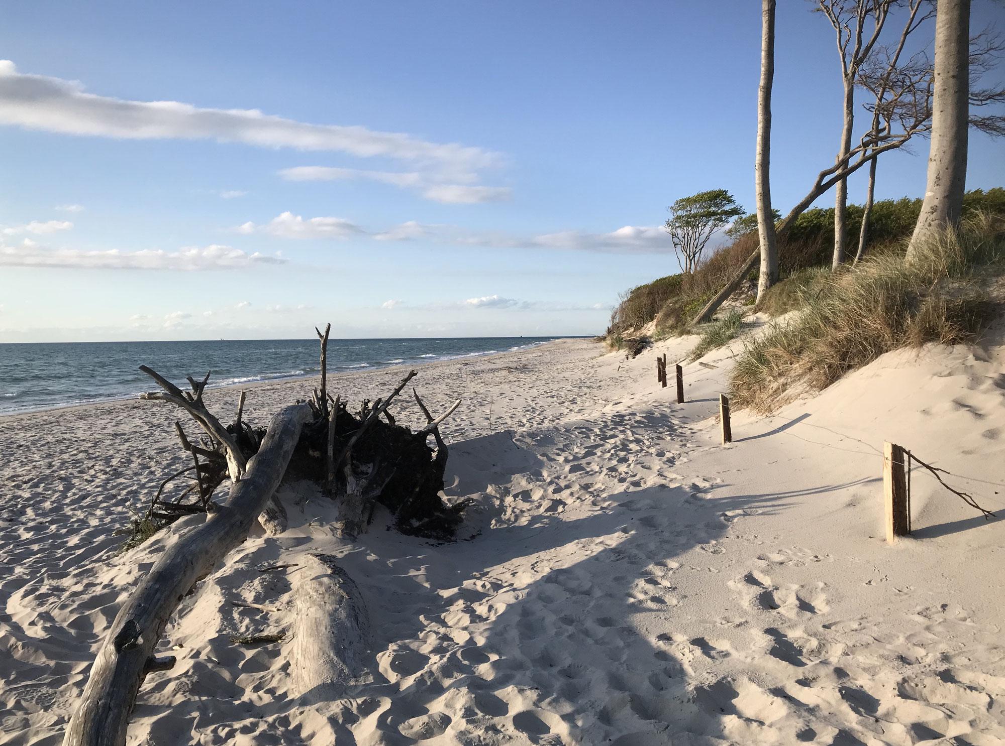 Fluch & Segen - 200 Tage Küstenlockdown & den Weststrand für mich ganz allein