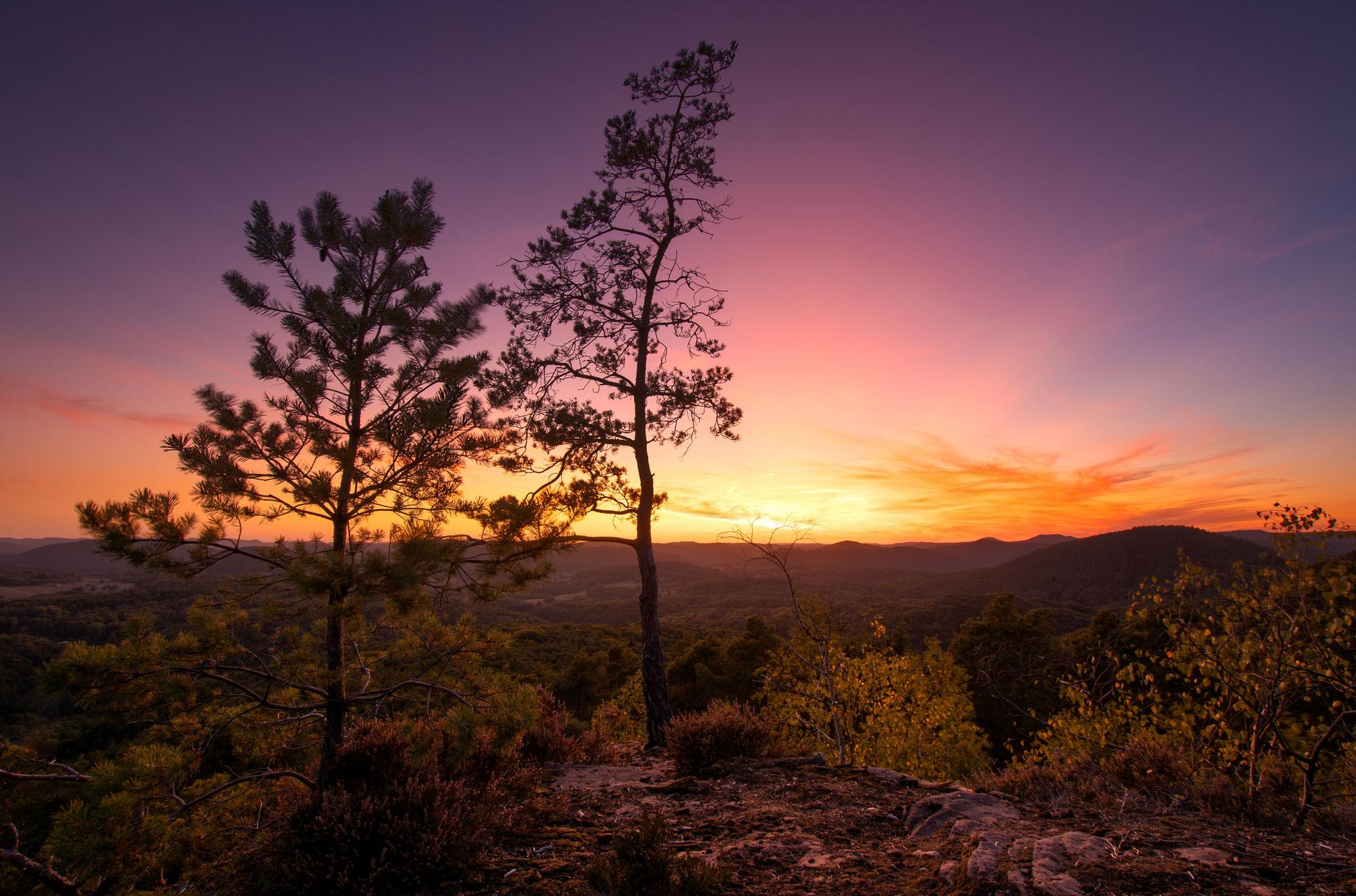 Die 4 schönsten Felsen im Pfälzerwald um den Sonnenuntergang zu fotografieren - Pfalz Fotospots