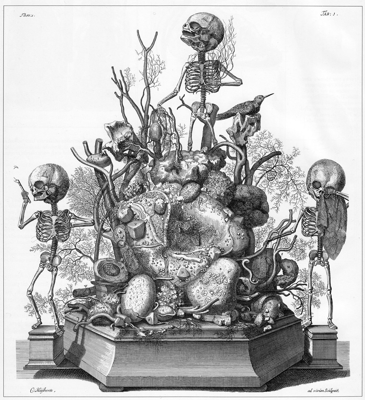 フレデリック・ルイシュ「人間盆栽」