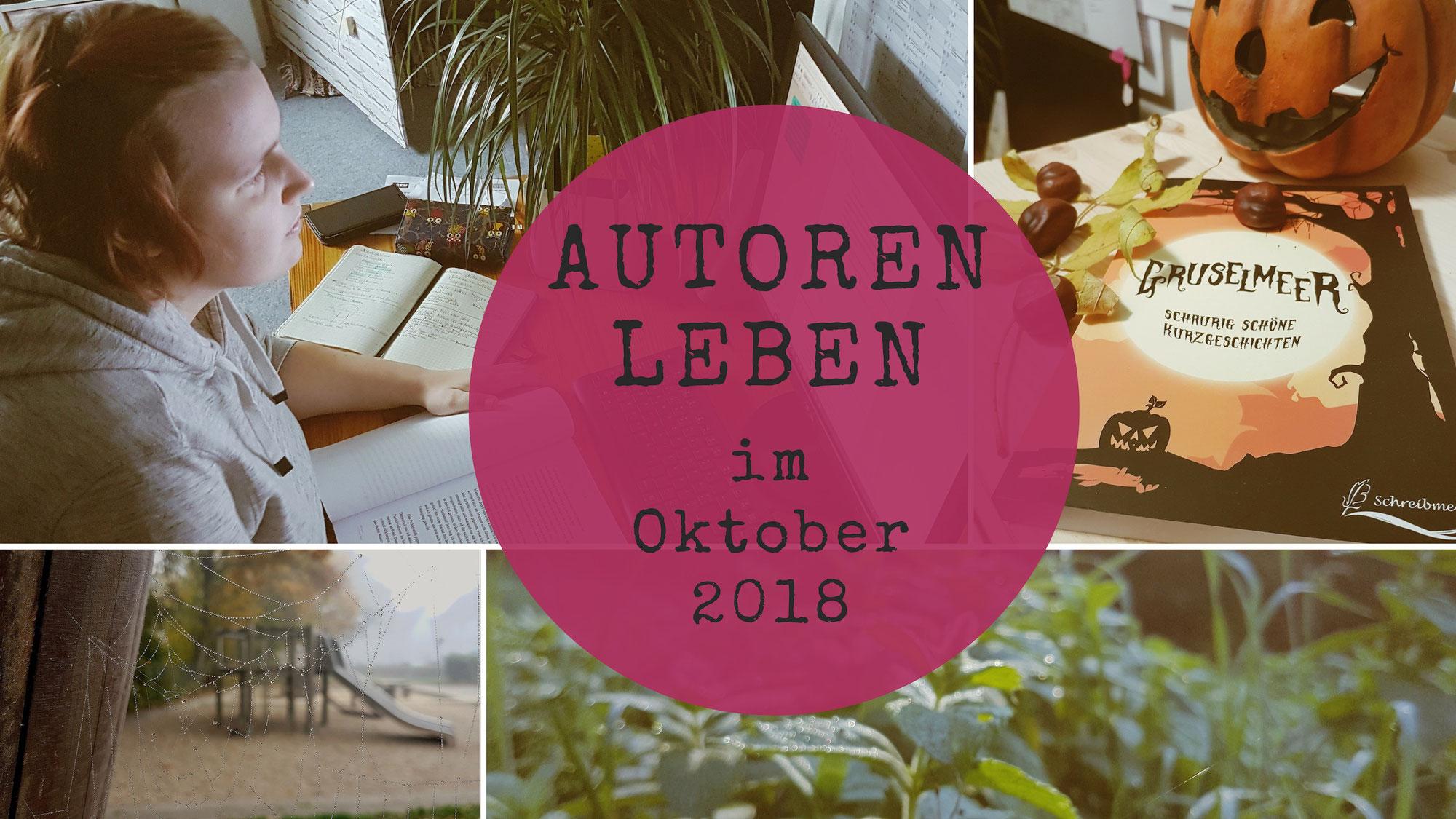 [Video] Plötzlich ins Krankenhaus | #Autorenleben im Oktober 2018 | Schreibvlog