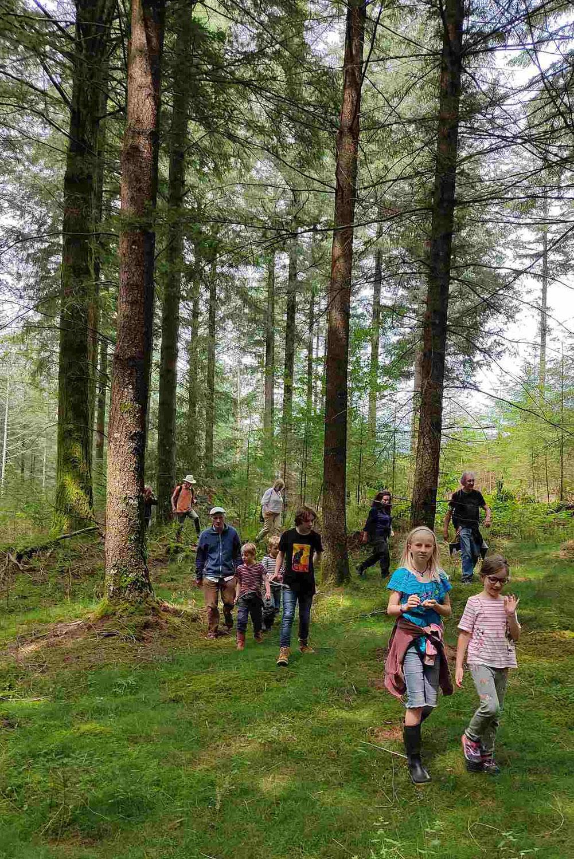 Avenir Forêt rassemble 100 personnes pour son AG 2021 en Corrèze