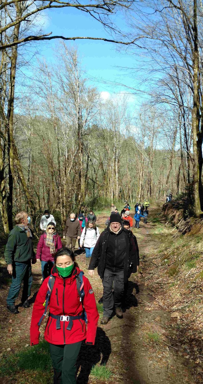 Avenir Forêt a réalisé une tournée forestière.