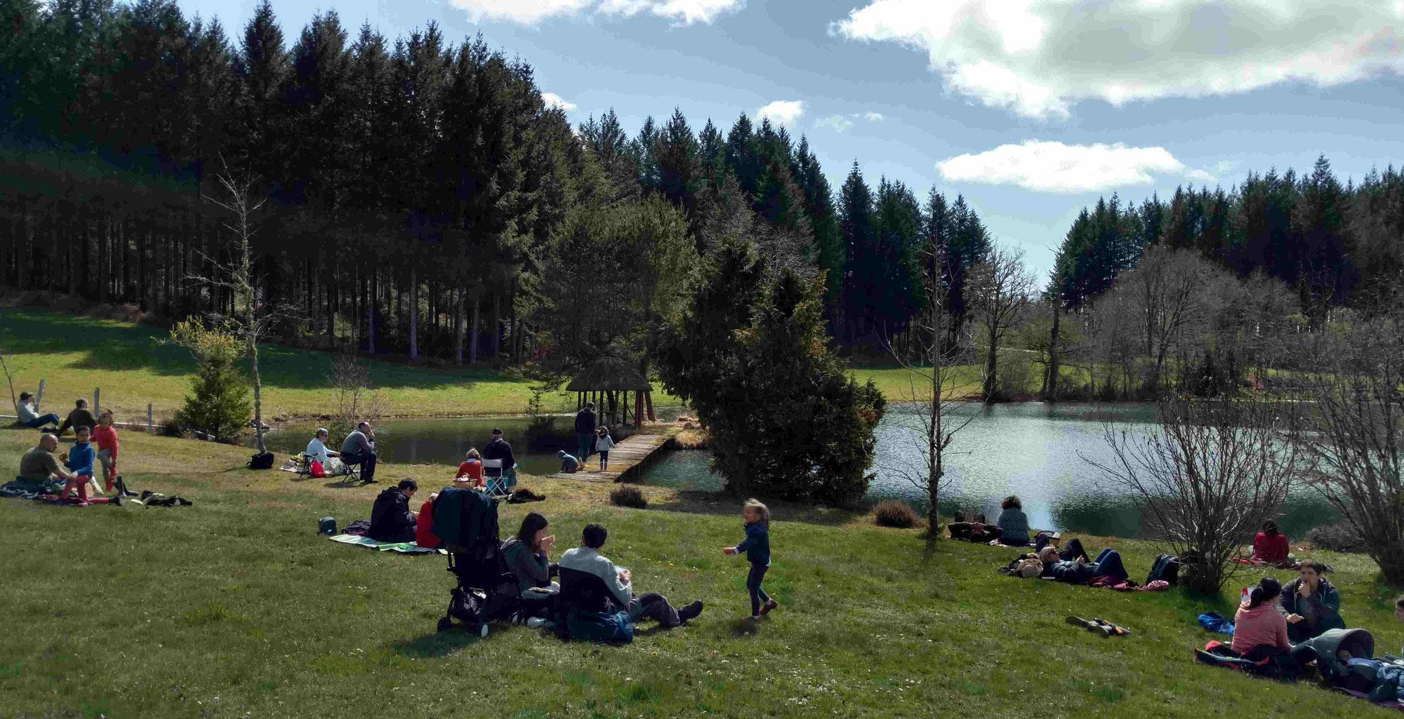 Avenir Forêt acquiert son 23ème massif forestier avec 62 ha à Eyrein en Corrèze