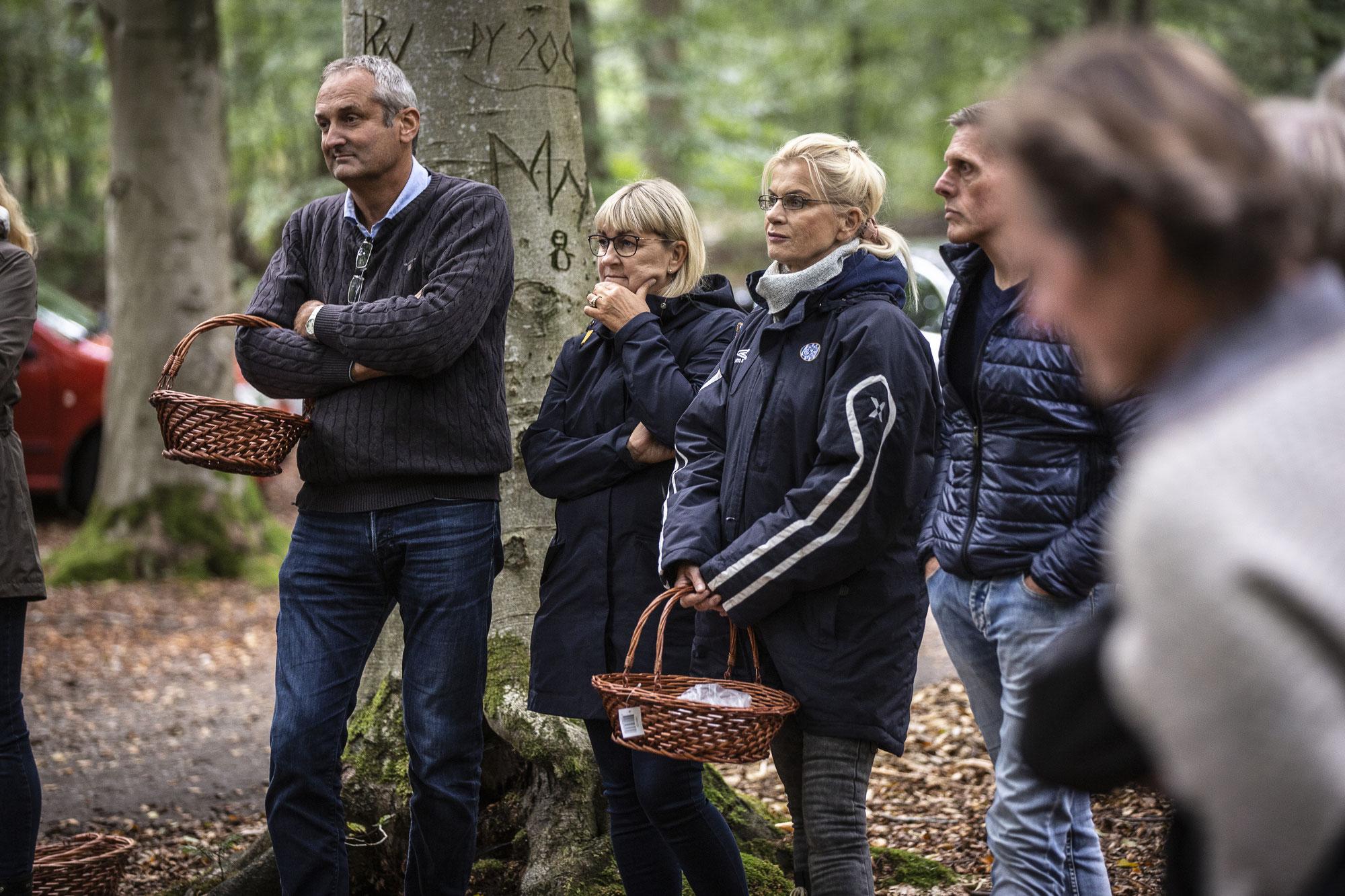 Herbstliche Gaumenfreuden in Dänemark: Pilzwoche an der dänischen Nordsee