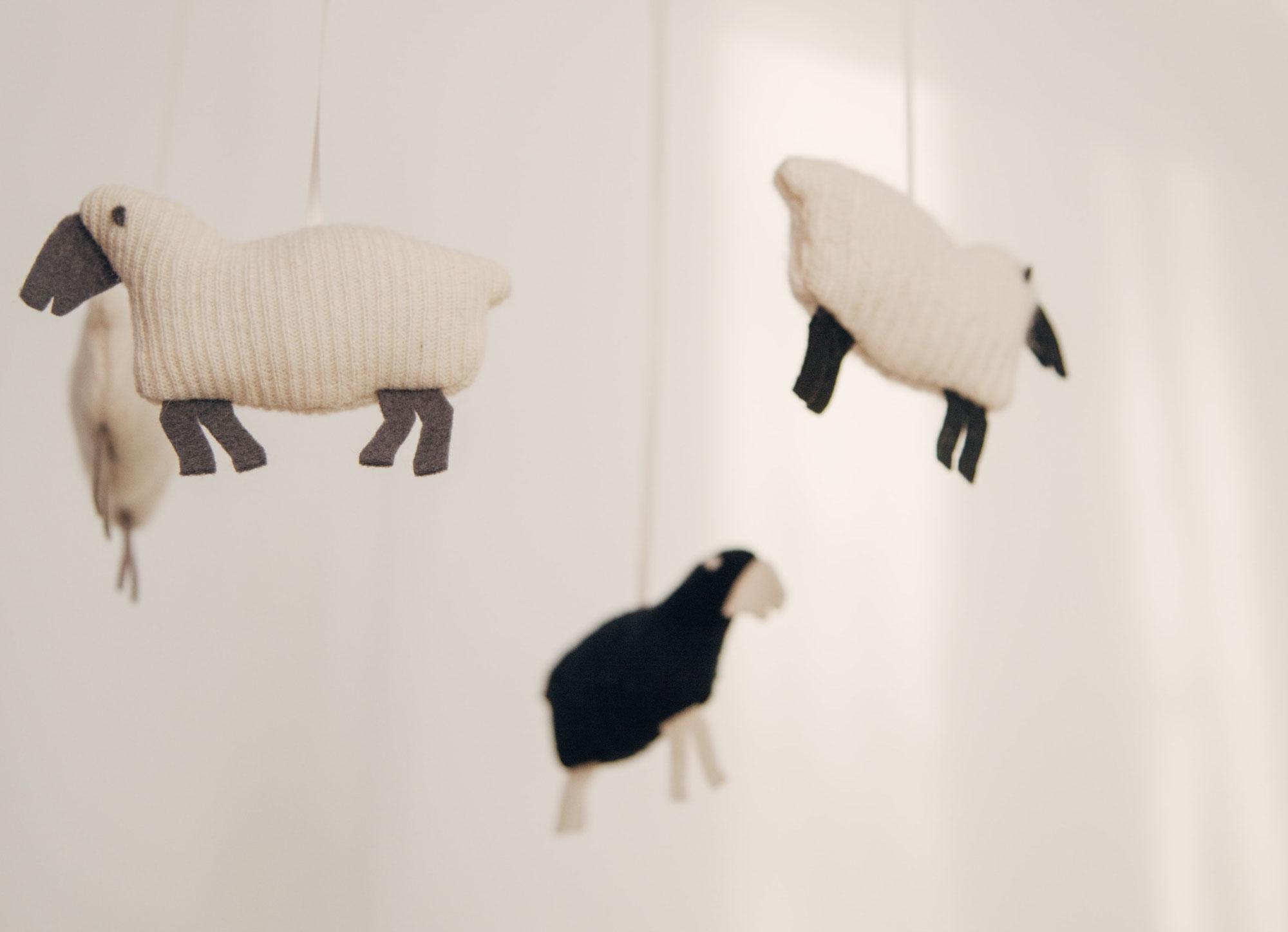 Mouton Noir et Systémie