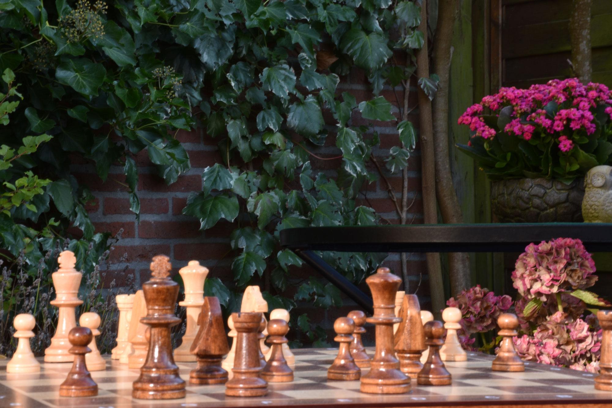 Indeling regionale schaakverenigingen in de competitie.
