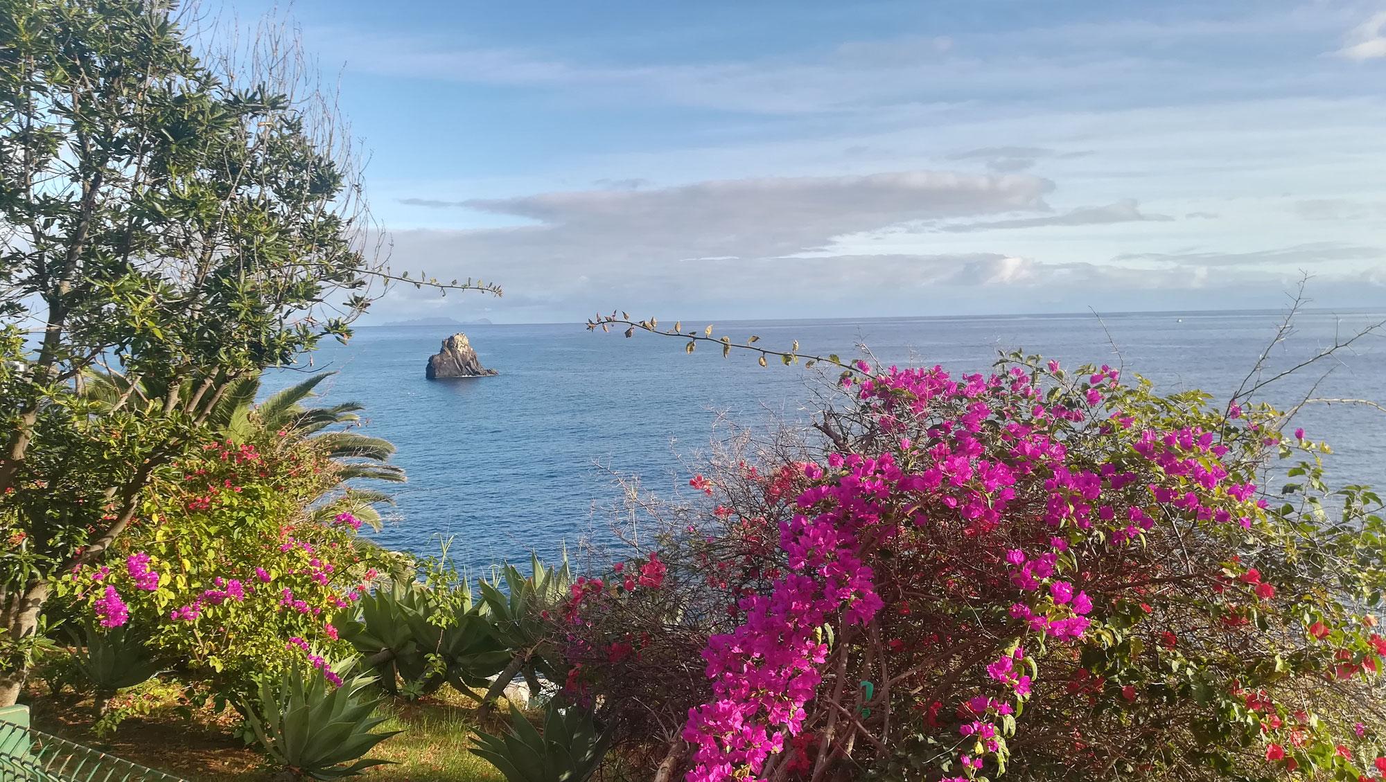 Madeira Urlaub - Norden oder Süden?