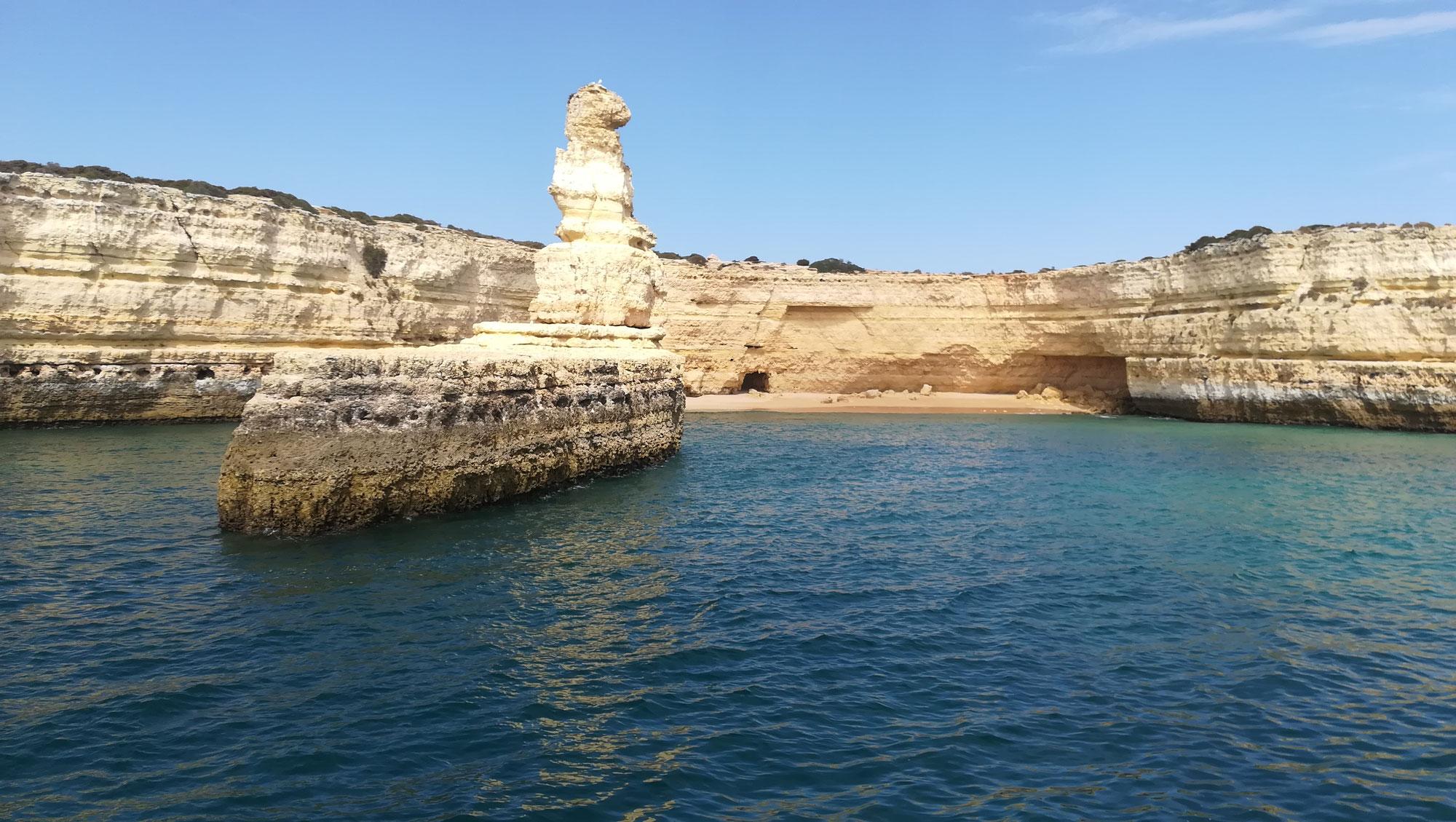 Auf der Suche nach Delfinen an der Algarve -Ein (un)freiwilliges Abenteuer