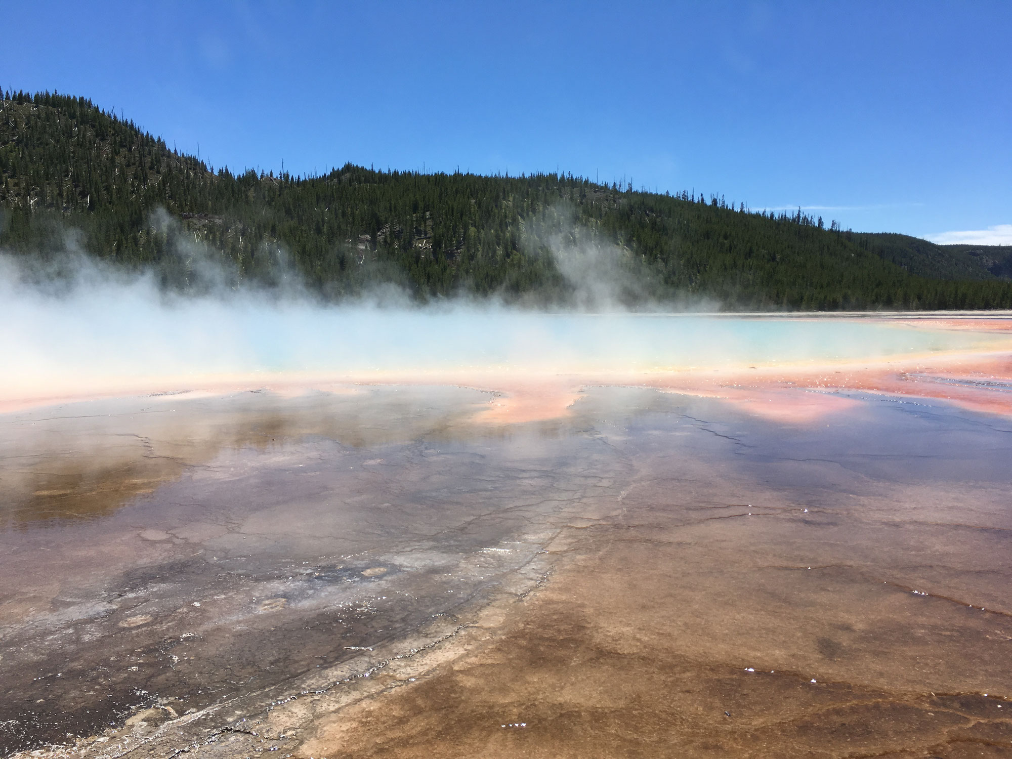 Yellowstone N.P. 16.6. - 26.6.2018