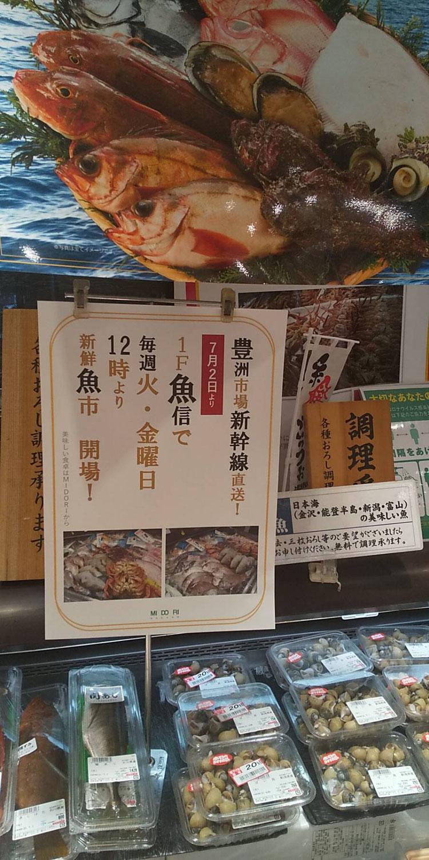 新鮮魚市開場!新幹線直送!