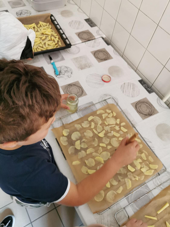 Die Kartoffel - Projekt in der Klasse 4b