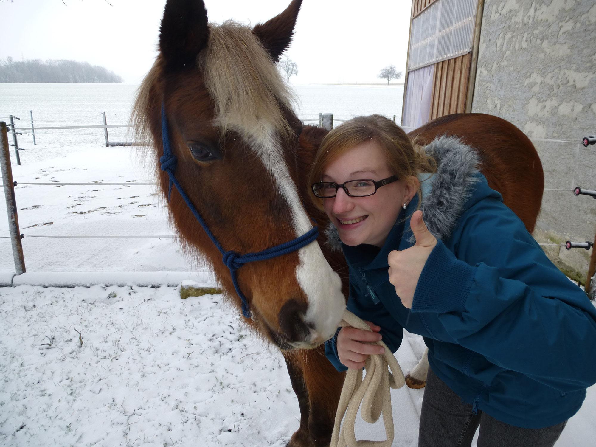 Majana, mein erstes eigenes Pferd