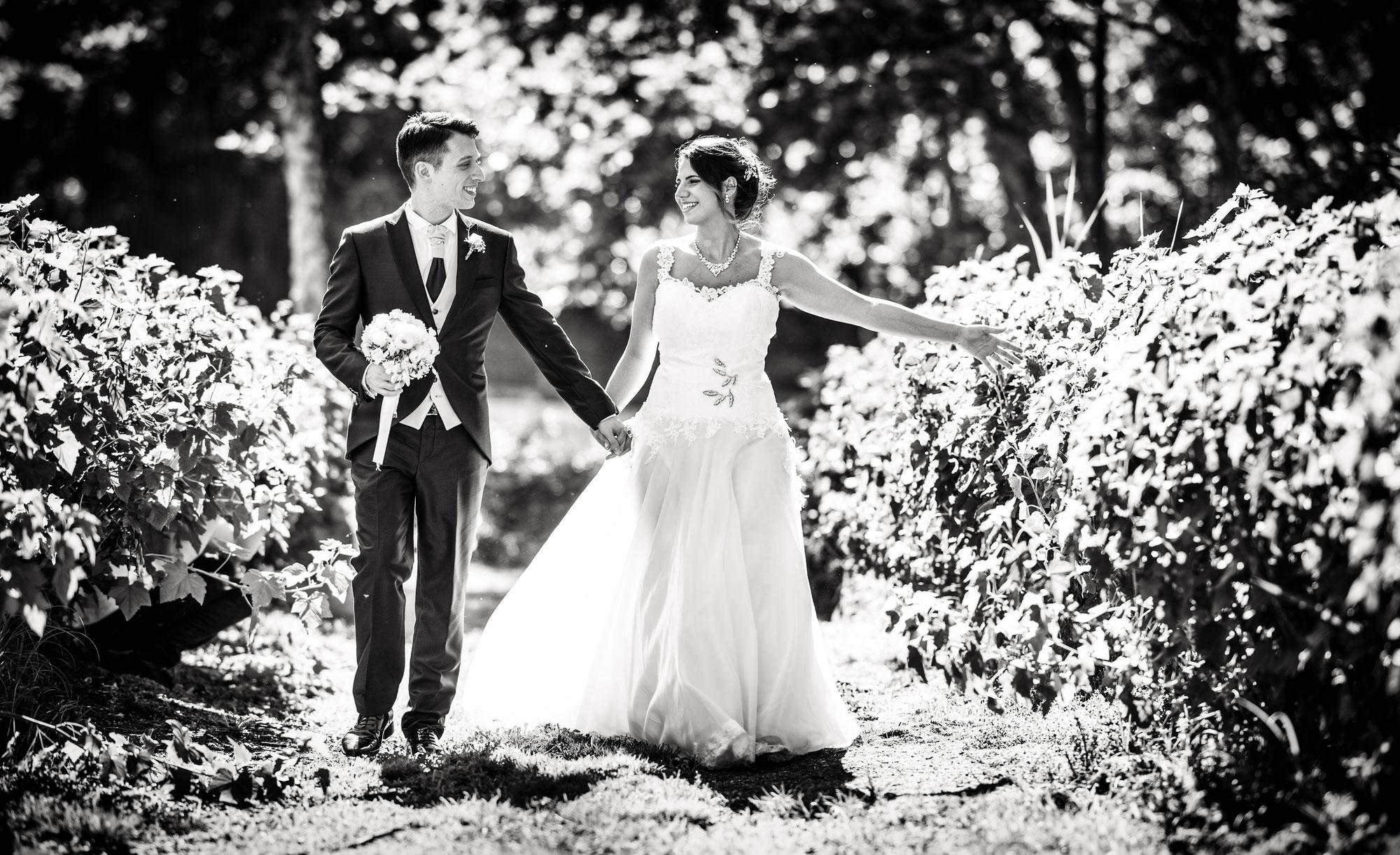 Fotografo Matrimonio Pavia - Matrimonio Tenuta Cortebella - Elisa e Danny