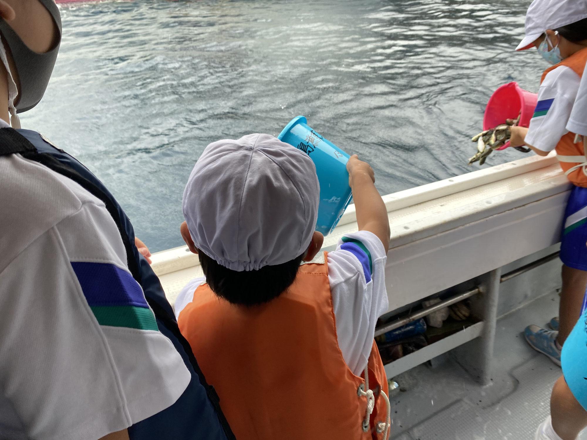 【馬渡島】フグ稚魚放流