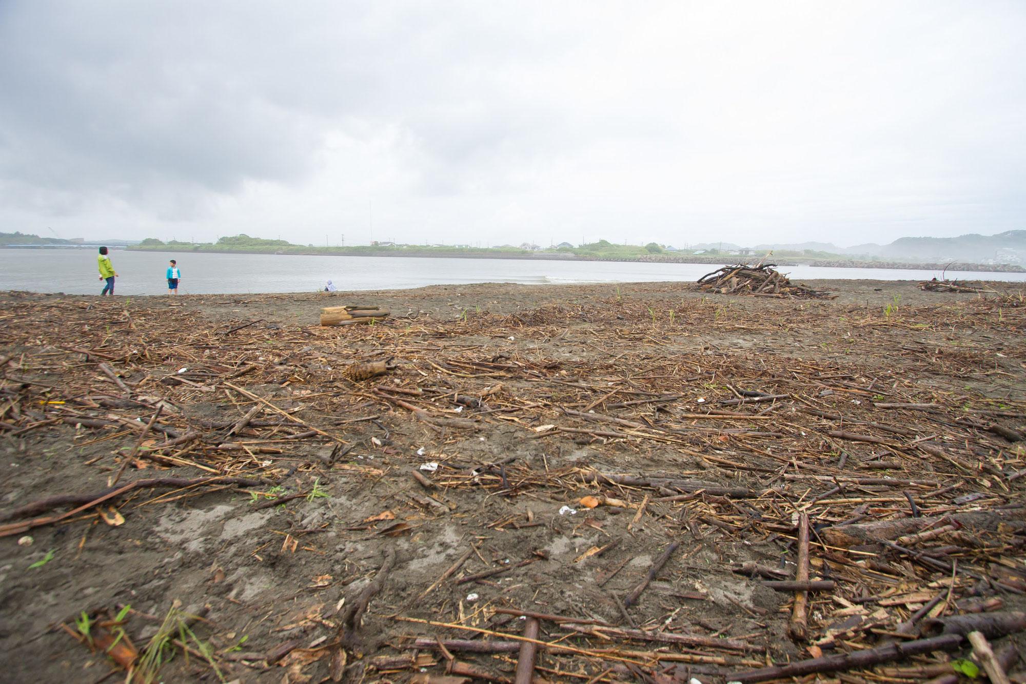 雨模様のため、次週11日(日)に延期です!!海岸の流竹を竹炭へ!第3回海岸竹炭イベントのお知らせ